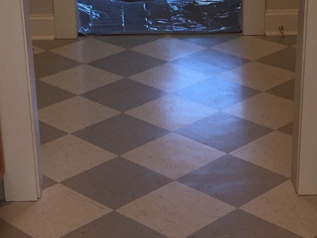 House Cleaning Floor Cleaning Strip and Wax